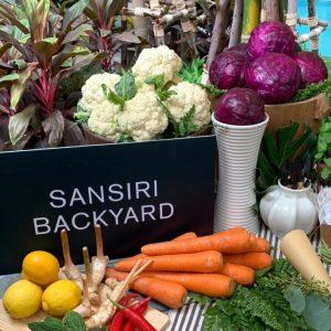 Sansiri-backyard-sansiri-blog-10