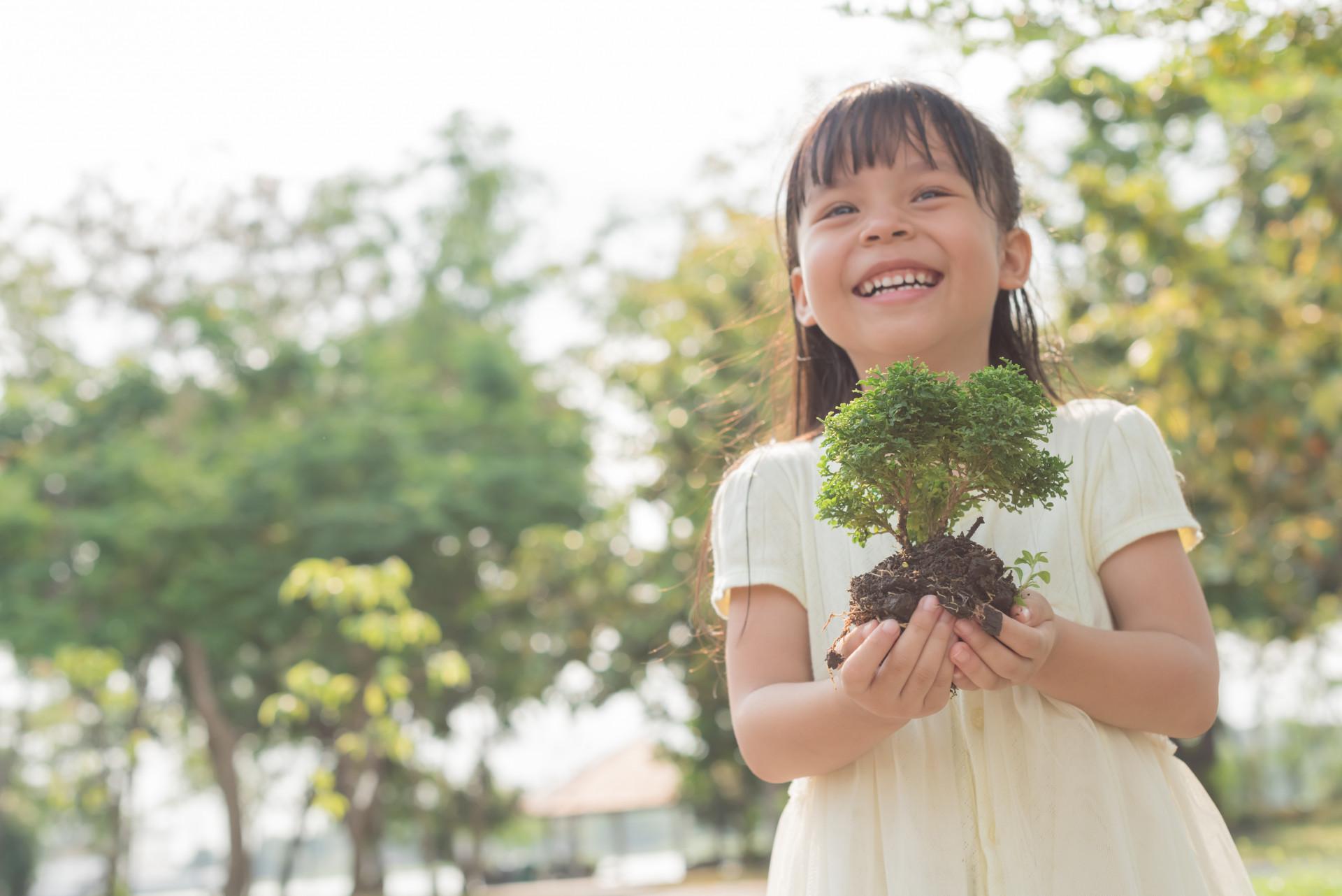 Sansiri Tree Day